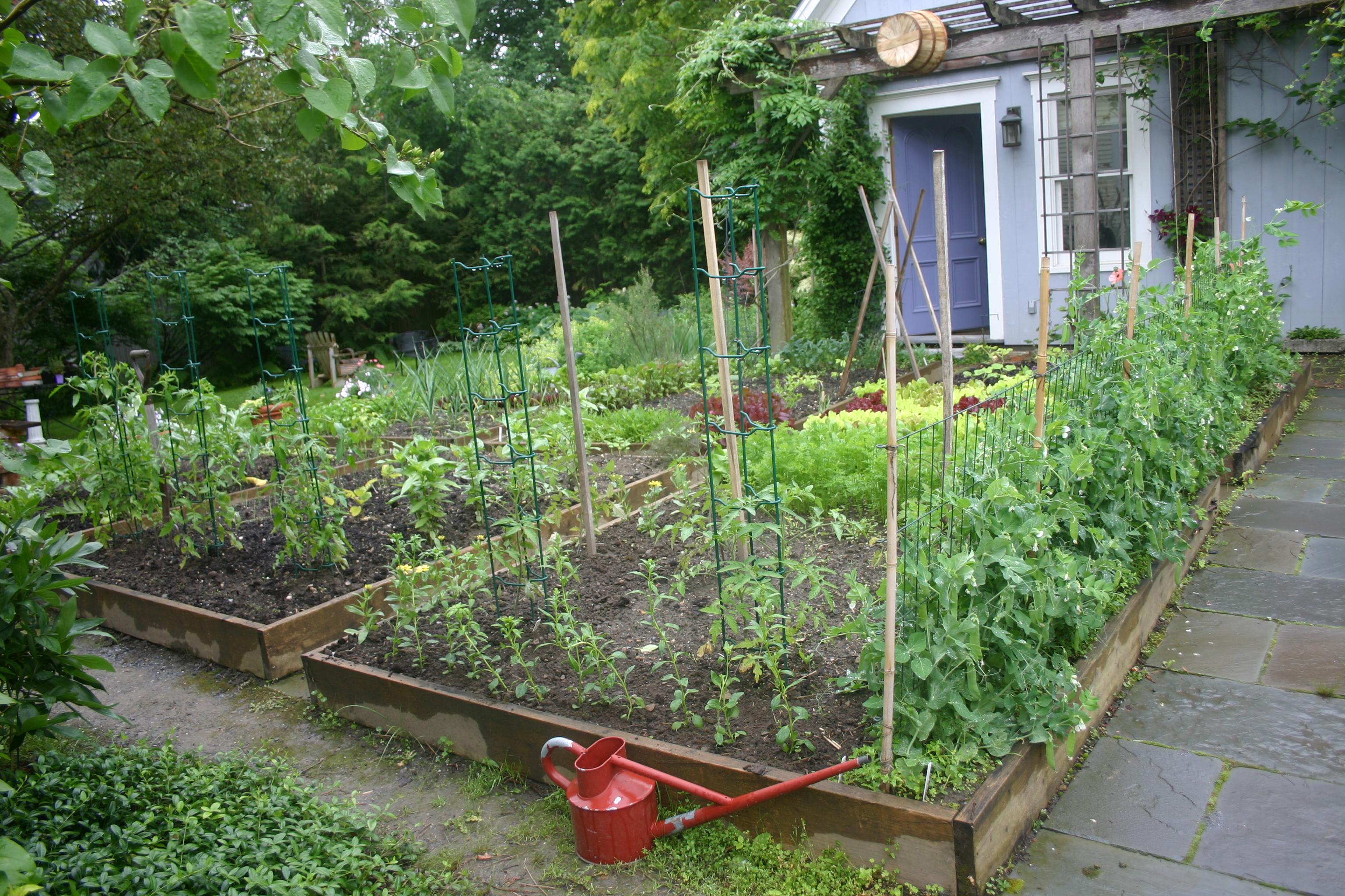 planning cooks in the garden. Black Bedroom Furniture Sets. Home Design Ideas